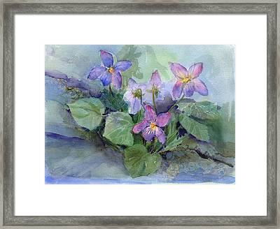 Violets Framed Print