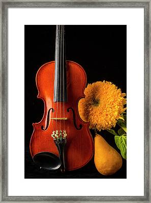 Violin Sunflower And Pear Framed Print