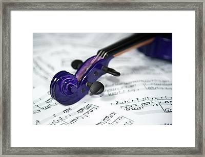 Violin Tuning Pegs  Framed Print