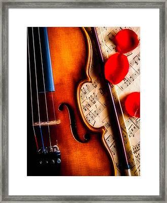 Violin With Rose Petals Framed Print