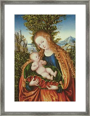 Virgin And Child Framed Print by Lucas the elder Cranach