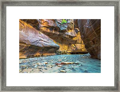 Virgin River Narrows Framed Print