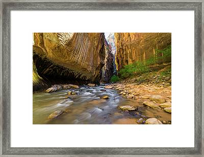 Virgin River - Zion National Park Framed Print