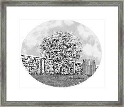 Virginia-dogwood Framed Print