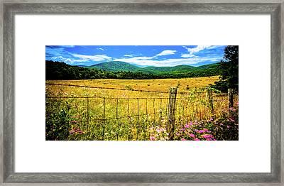 Virginia Fields Of Green Framed Print by David Hahn