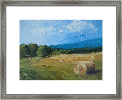 Virginia Hay Bales II Framed Print by Donna Tuten