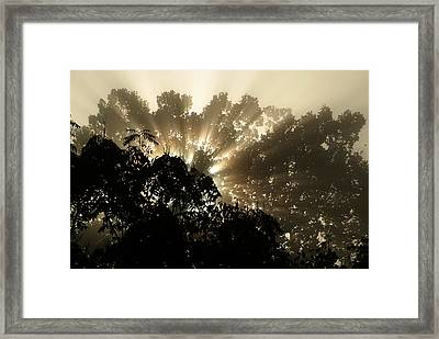 Virginia Sunrise Framed Print
