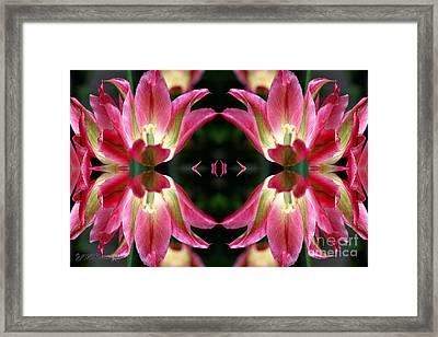 Virichic Abstract Framed Print