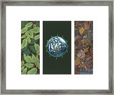 Viriditas Triptych Framed Print