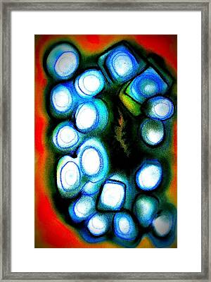 Virtual Worlds Framed Print by Joan Kamaru