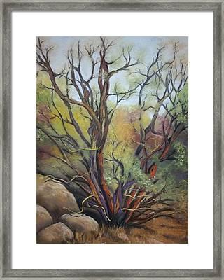 Virtue Framed Print by Darlene Jaeger