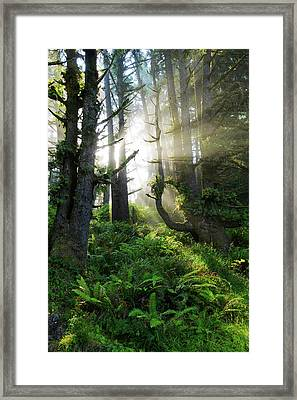 Vision Framed Print by Chad Dutson