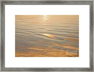 Vision Of Gold Framed Print