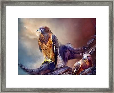 Vision Of The Hawk 2 Framed Print