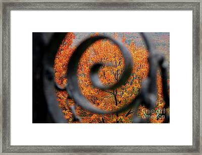Vision Framed Print by Sheila Ping