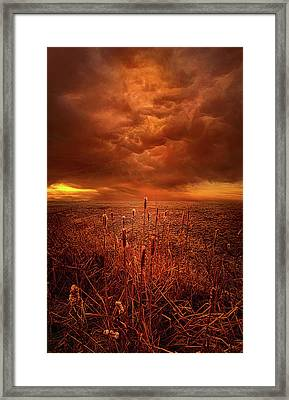 Vision Softly Speaking Framed Print by Phil Koch