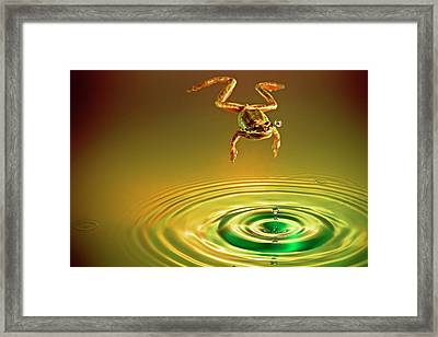 Vision Framed Print by William Lee