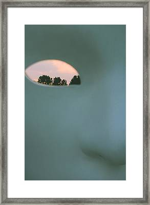Visions At Sunset Framed Print