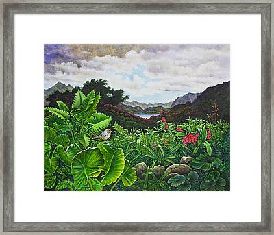 Visions Of Paradise Viii Framed Print by Michael Frank