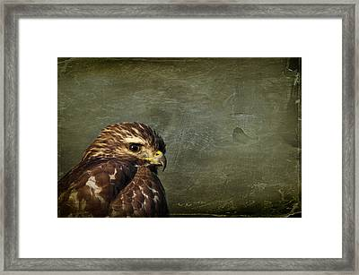 Visions Of Solitude Framed Print
