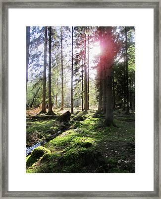 Visions Of Ytene 1 Framed Print