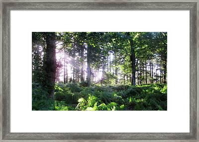 Visions Of Ytene 2 Framed Print