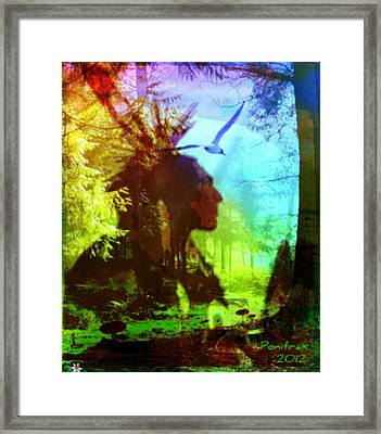 Visions Framed Print by Poni Trax