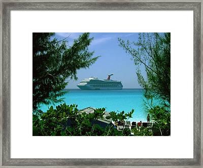 Visiting Paradise Framed Print