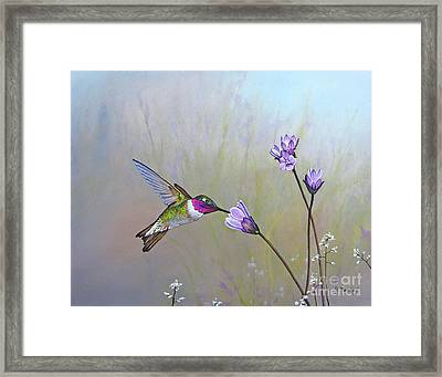 Visiting The Purple Garden Framed Print