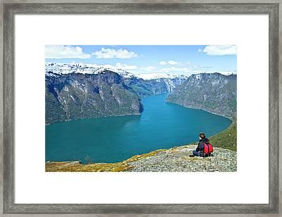 Visitor At Aurlandsfjord Framed Print by Heiko Koehrer-Wagner