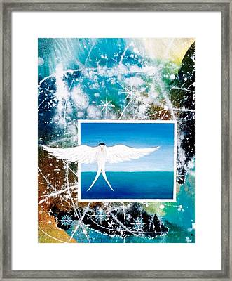 Visitor From Oceania Framed Print by Lee Pantas