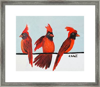 Visits From A Dancing Cardinal Framed Print