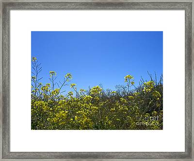 Vista Flores Framed Print by Jim Thomson