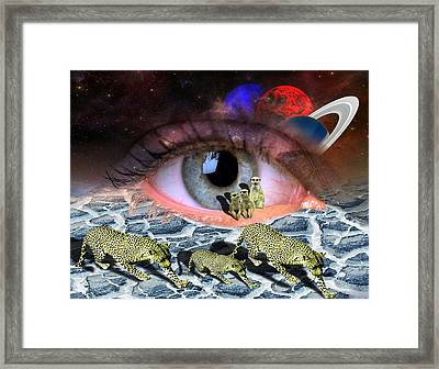 Visual Acuity Framed Print
