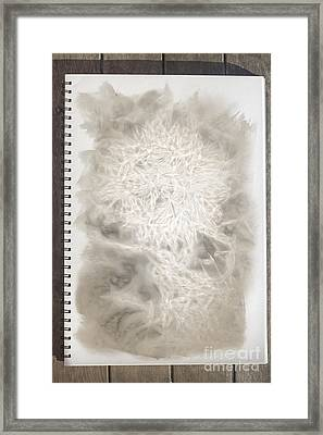 Visual Diary Dandelion Framed Print by Jorgo Photography - Wall Art Gallery