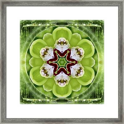 Vitality Of Love Framed Print