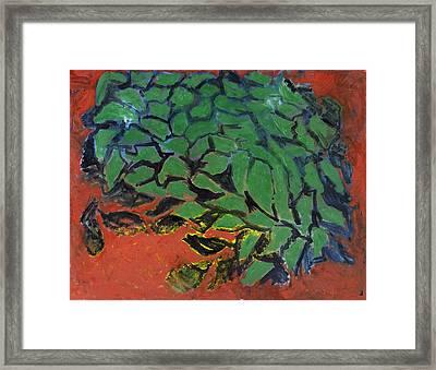 Vitanoah Framed Print by Joan De Bot