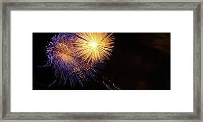 Viva La Celebration Framed Print by John Julio