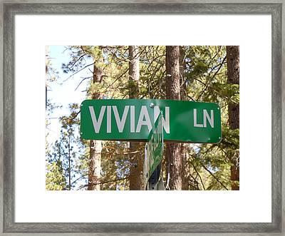 Vivian Lane Framed Print by Dan Whittemore