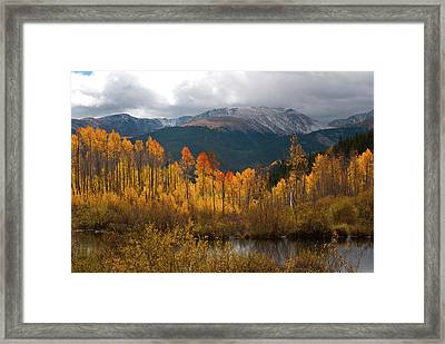 Vivid Autumn Aspen And Mountain Landscape Framed Print