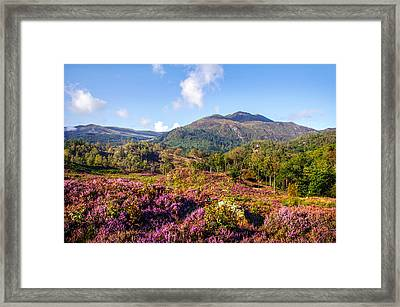 Vivid Glimpses Of Autumn In Trossachs Framed Print by Jenny Rainbow