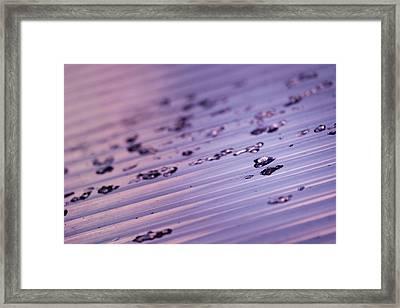 Vivid Ice Framed Print by Nicole Frischlich