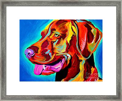 Vizsla - Dog Days Framed Print by Alicia VanNoy Call