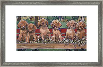 Framed Print featuring the painting Vizsla Pups by Nadi Spencer