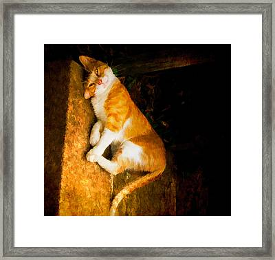Vogue 2 Framed Print by Michael Taggart II