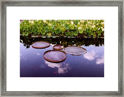 Voices In The Sky Framed Print by Jan Amiss Photography