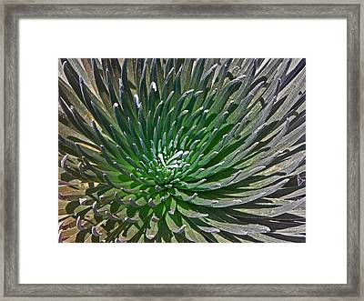 Volcanic Beauty I Framed Print by Elizabeth Hoskinson