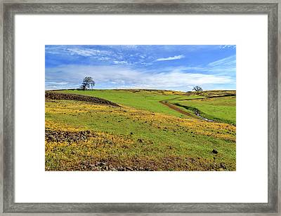 Volcanic Spring Framed Print