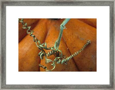 Voluptuous Autumn Framed Print by Laurie Paci