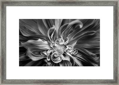 Vortex Framed Print by Mary Jo Allen